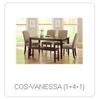 COS-VANESSA (1+4+1)